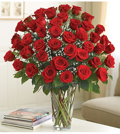 Four Dozen Red Roses