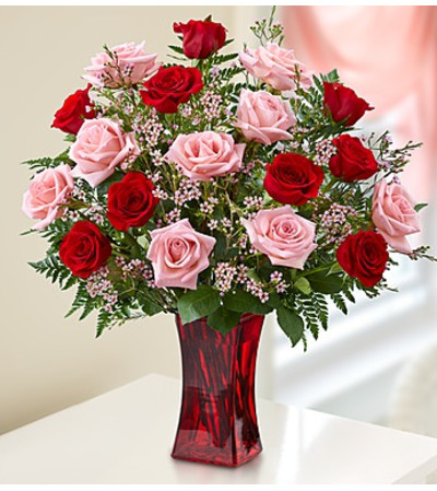 Eighteen Pink & Red Roses in Red Vase