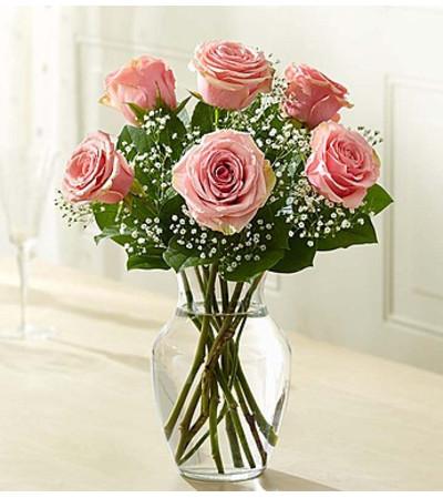 Six Pink Roses