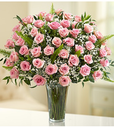 Four Dozen Pink Roses