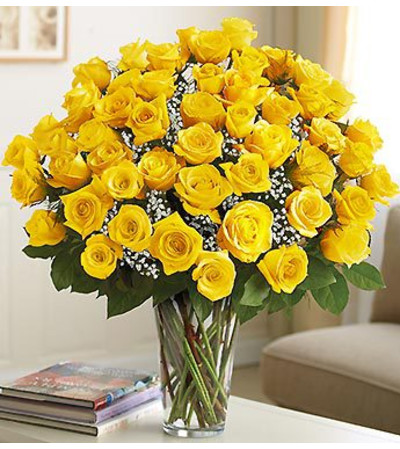 Four Dozen Yellow Roses