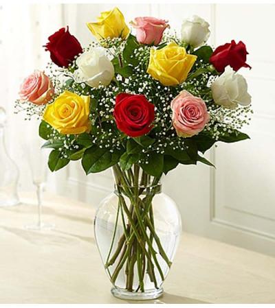 One Dozen Assorted Roses