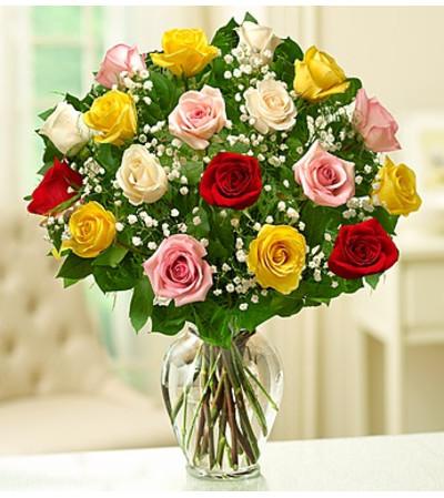 Eighteen Assorted Rose
