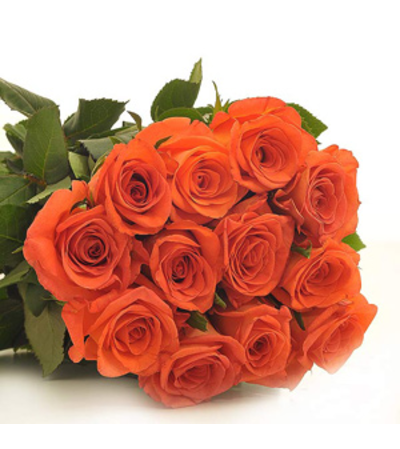 Perfectly wrapped Orange Roses