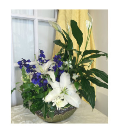 Blue and White Dish Garden