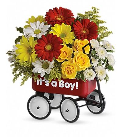 Baby's First Wagon BOY
