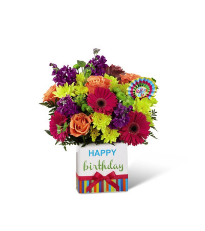 Petra Birthday Bright