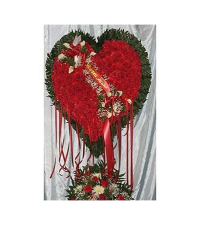 Bleeding Heart Red Carnations