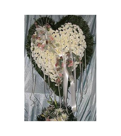 Bleeding Heart White Carnations