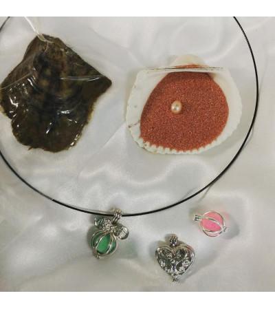 Oyster Pearl Treasure