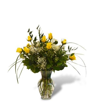 Premium Dozen Roses in Yellow