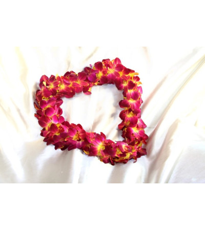 burgandya and yellow(usc color )orchid lei
