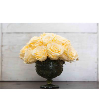 Preserved Rose Arrangement