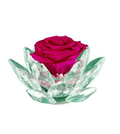 Forever Rose - Crystal Bloom