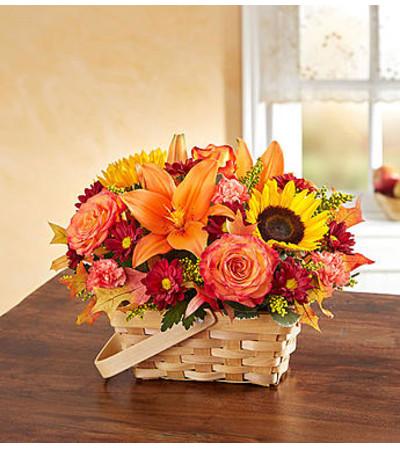 Autumn in a Basket