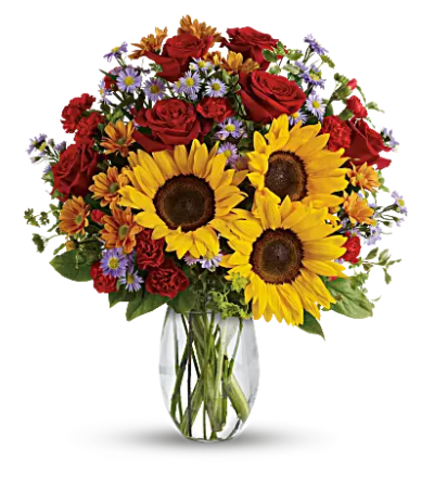 Teleflora - Pure Happiness Bouquet