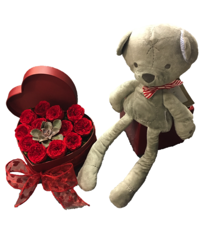 Preserved 12 Roses with Teddy