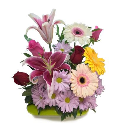 Modern Florist Choice
