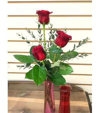 Three Sweet Roses