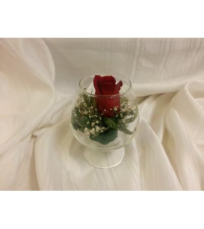 Single Red Rose in bowl
