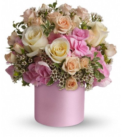 Teleflora's Blushing Beauty