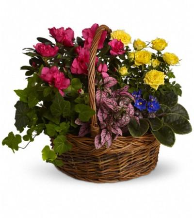 Blooming Garden Basket