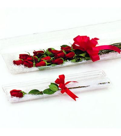 A Dozen Boxed Premium Roses