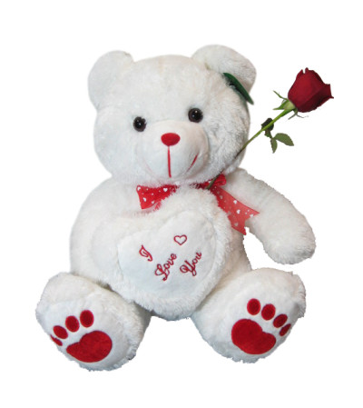 Medium Jumbo Teddy Bear white