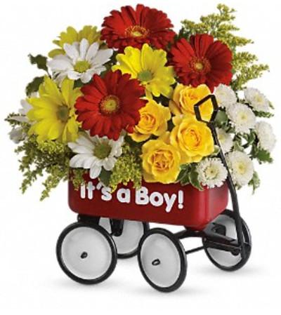 Red Baby Wagon Boy