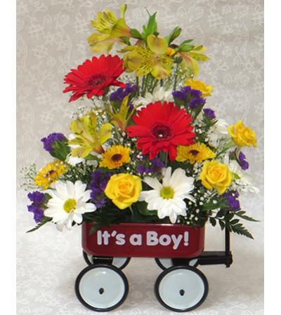 Baby Boy Wagon