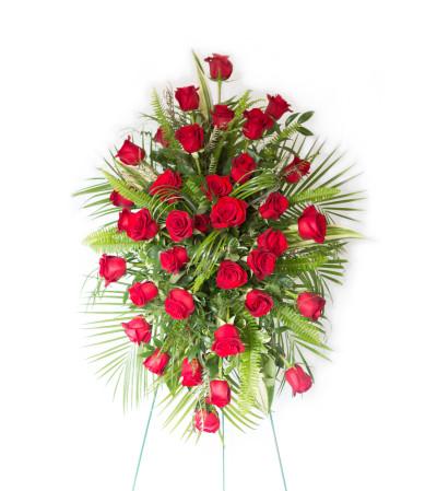 Classic Red Rose Tribute