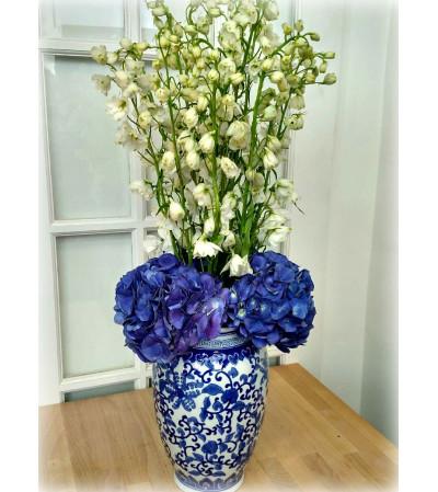 True Blue Beauty
