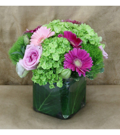 Admiration by Windsor Florist