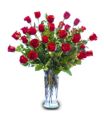 Ultimate Roses DW