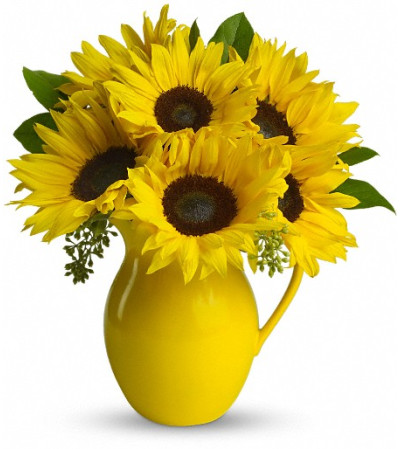 Teleflora's Sunny Day Pitcher of Sunflowers