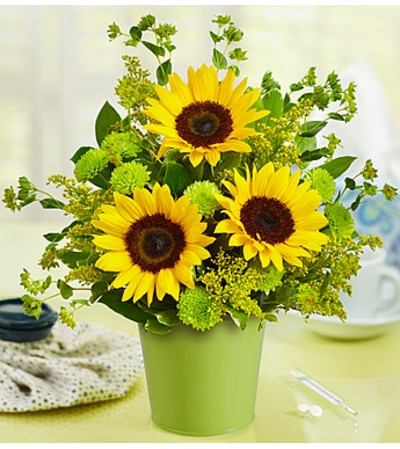 Get Well Soon Bouquet in Green Tin