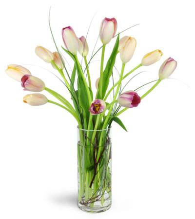 Windswept Tulips™