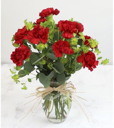 Classic Red Carnation Arrangement