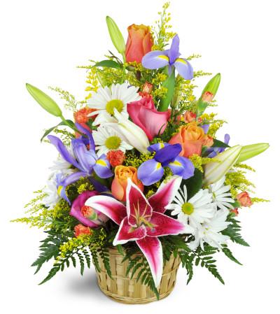 Stargazer Blessings Basket Spring Hill Fl Florist