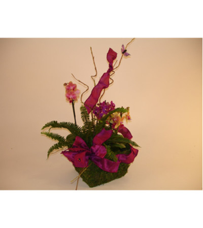 Mini Orchids in Basket (Large)