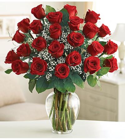 Rose Elegance - 24 Red Roses