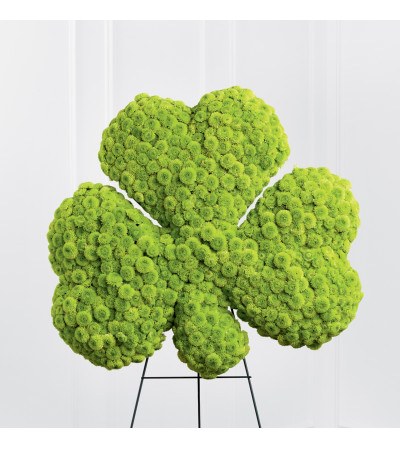 The FTD® Forever™ Shamrock Easel