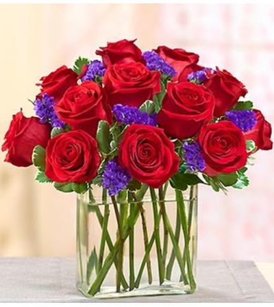 Modern Roses - One Dozen Red