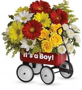 Teleflora's Baby's Wow Wagon - Boy
