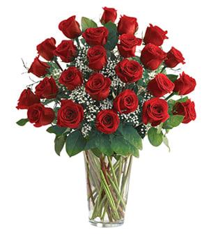 Classic 2 Dozen Red Rose