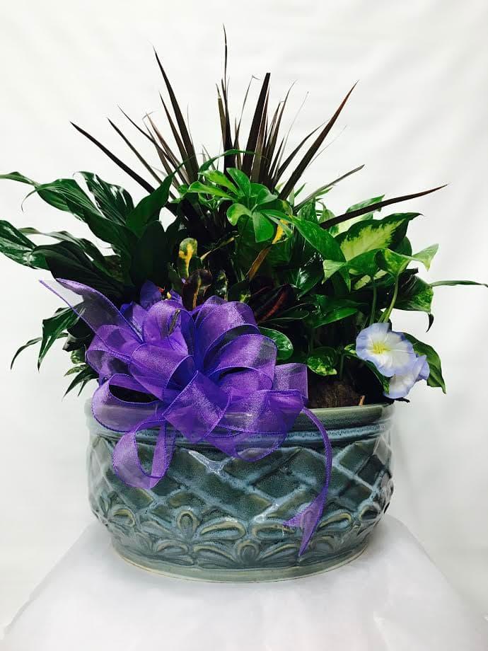 Large Spring Ceramic Dish Garden