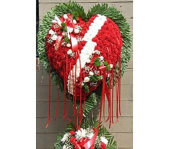 Broken Heart with White Carnation Break