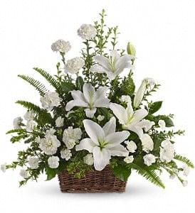 Teleflora's Peaceful White Lily Basket