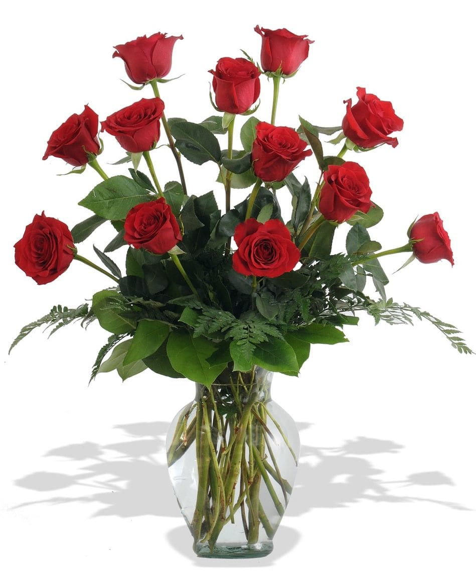 1 Dozen Premium Red Roses  SALE!   ***Local Delivery Only***