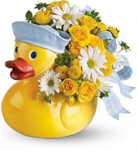 Just Ducky Boy
